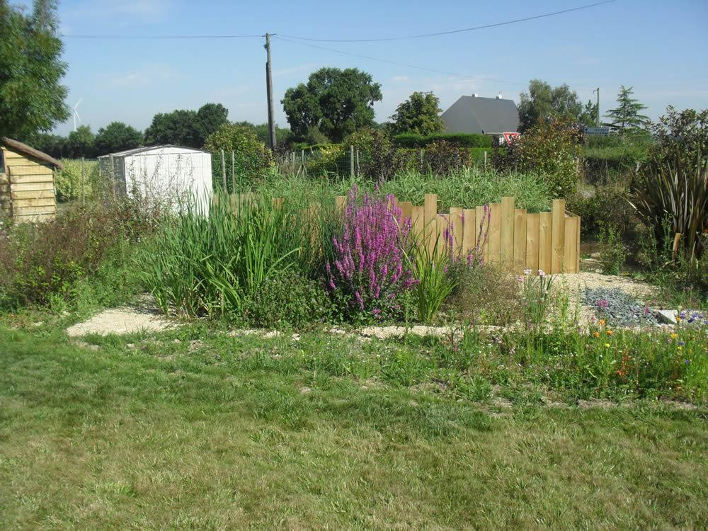 Assainissement par les plantes derval chateaubriant for Vers dans les plantes